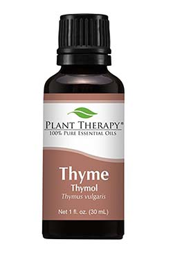 Plant Therapy Thyme Thymol Essential Oil