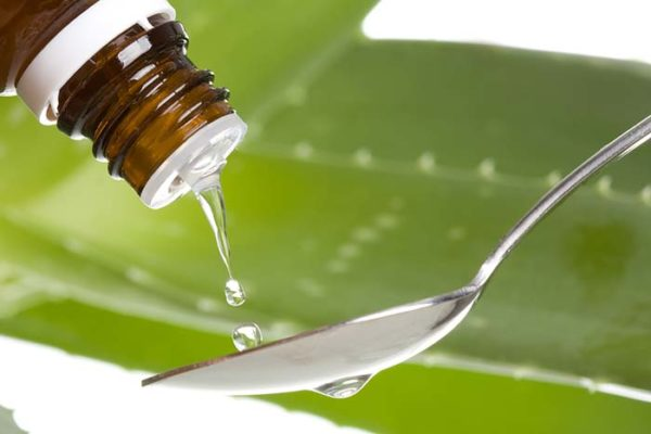 Aloe Vera - alternative medicine essential oils for hair growth