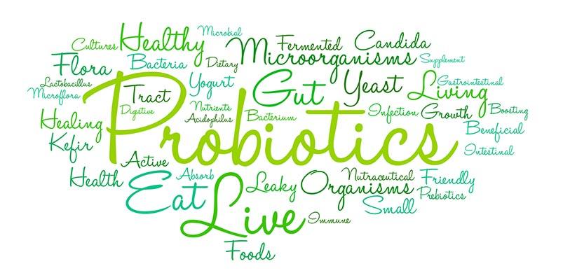 probiotics for horses
