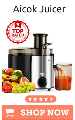 best brand juicer machine