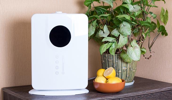 best portable dehumidifier